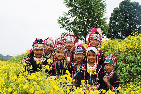 Doi Sa Ngo_Chiang Rai 2